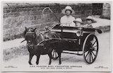Princess Mary, Countess of Harewood; Hon. Gerald David Lascelles; George Lascelles, 7th Earl of Harewood