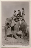 'H.M. The King-Emperor's Shoot in Indian Jungle'