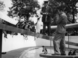 Walt Disney at the London Zoo