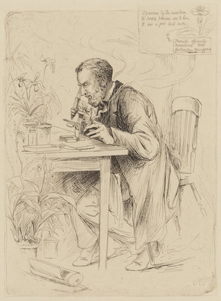 Alexander Dickson