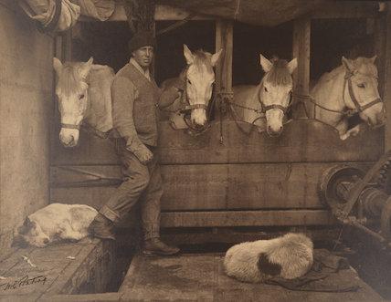 Lawrence Oates ('Captain Oates and Siberian Ponies aboard the Terra Nova')