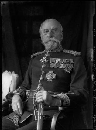 Sir Alliston Champion Toker