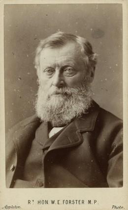 William Edward cullen Forster Essay