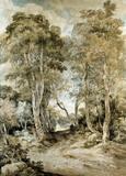 Wood Scene, by John Crome