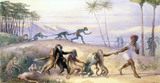 The Manners and Customs of Monkeys, by Richard Doyle