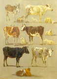 Studies of Animals: Cows and Oxen, Sheep and a Donkey, by Jean François Legillon