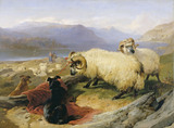 Tethered Rams, by Sir Edwin Landseer