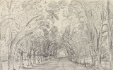 Avenue of trees, by John Constable