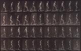Man ascending and descending incline, photo Eadweard Muybridge