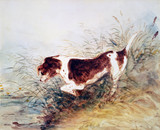 Dog Watching a Rat in the Water at Dedham, by John Constable