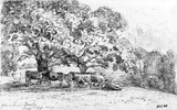 Wivenhoe Park, by John Constable