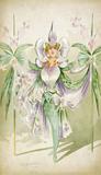 Costume design for a female Orchide, by Attilio Cornelli