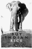 Buy Indian Rice, by Spencer Pryse Gerald