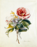 Camellia Bouquet from Flower Pieces, by Anne Marie