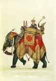 Akbar II mounted on an elephant