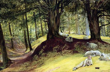Parkhurst Woods, by Richard Redgrave