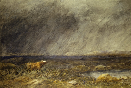 The Challenge: A Bull in a Storm on the Moor, by David Cox