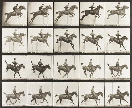 A horse jumping a fence, by Eadweard Muybridge