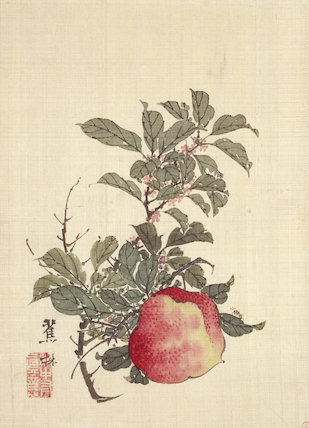 Apple, Pink Blossom and Foliage, by Shorin