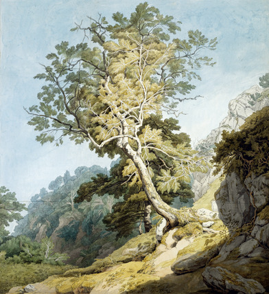 View near Camonteign, Devon, by John White Abbott