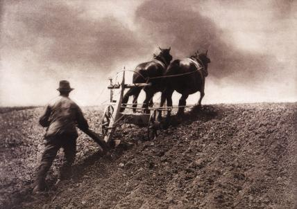 A Stiff Pull, photo Peter Henry Emerson