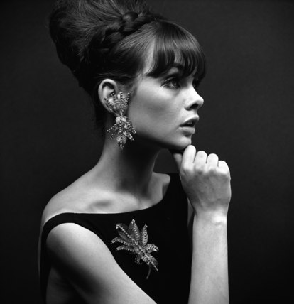 Model with earing and brooch
