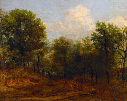 A Wood, by John Constable