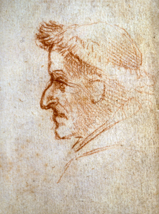 Forster Codex, by Leonardo da Vinci