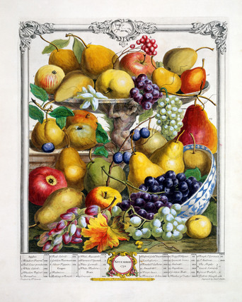 November, The Twelve Months of Fruits