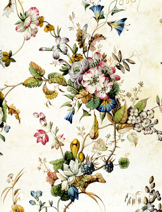 Textile designs from the Kilburn album, by William Kilburn
