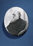 Charles Darwin, English naturalist, c 1870s.