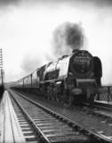'The Duches of Montrose' steam locomotive.
