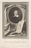 William Harvey, English physician, c 1657.