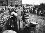 Female fish-gutters on the quayside, Whitby, North Yorkshire, c 1900s.