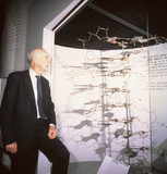 James Dewey Watson with his original DNA model, 9 June 1994.