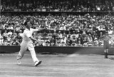 Tennis player Fred Perry in action during Wimbledon 1931.