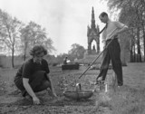 A couple gardening an allotment in Hyde Park, 18 May 1941.