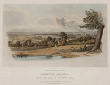 'Greenwich Railway. View from back of Greenwich Road', 19th century.