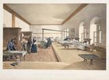 Hospital ward, Scutari, Crimea, 1856.