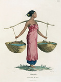 Canda, a young Malay woman, Timor, 1801-1803.