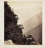 'Chini', c 1865.