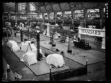 Motor Show at Olympia, 1933.