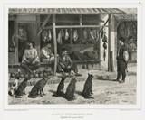 Butcher and other Tatar merchants, Baghtcheh-Sarai, Crimea, 1837.