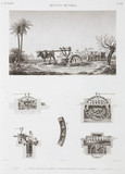 """Animal-powered irrigation, Egypt, c 1798."""