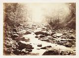 A sunlit stream, c 1855.