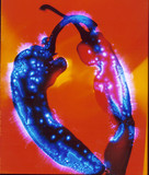 Kirlian photograph of capsicums.