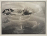 'Water Lillies', 1907-1908.