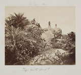 'Tiger Hunt, Dead!', c.1860.
