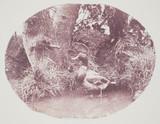 'Still Life', c 1856.