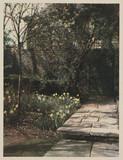 'In My Garden', c 1925.